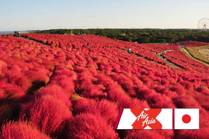 ทัวร์ญี่ปุ่น Tokyo Ibaraki Fuji Family Autumn  (ก.ย.-พ.ย.61)