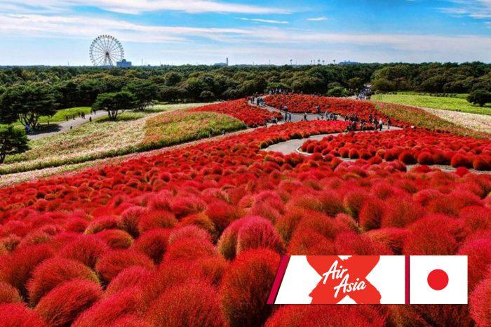 ทัวร์ญี่ปุ่น Tokyo Strong รอน้อง ณ ทุ่งดอกไม้แดง 6D3N (ก.ย.-พ.ย.61)