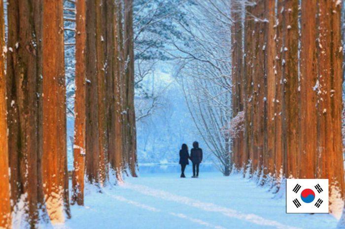 ทัวร์เกาหลี Korea Best Winter (ธ.ค.61-มี.ค.62)