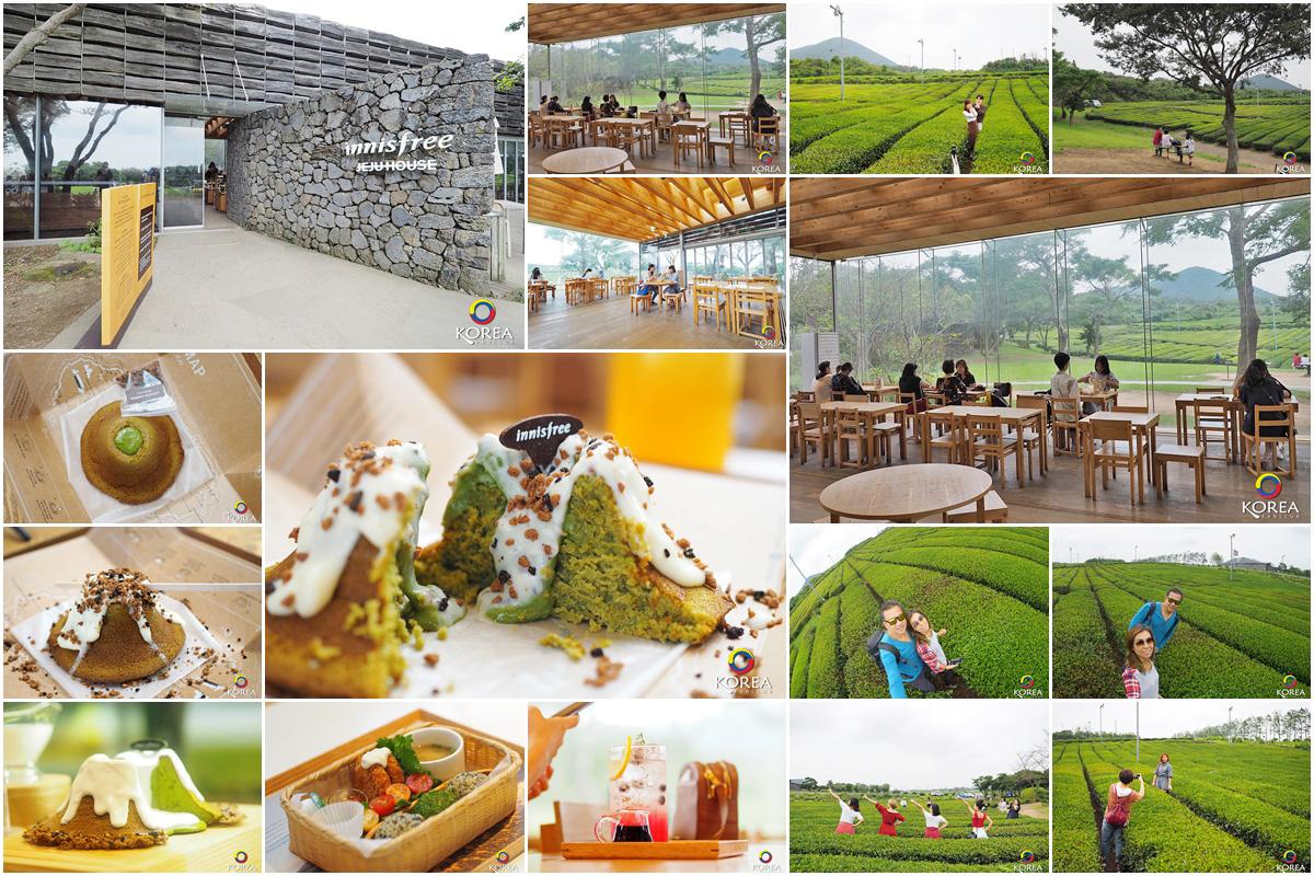 innisfree Jeju House เกาะเชจู