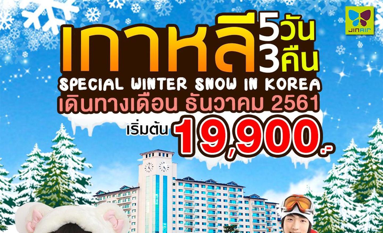 ทัวร์เกาหลี Special Winter Snow (พักสกีรีสอร์ท) (ธ.ค.61)