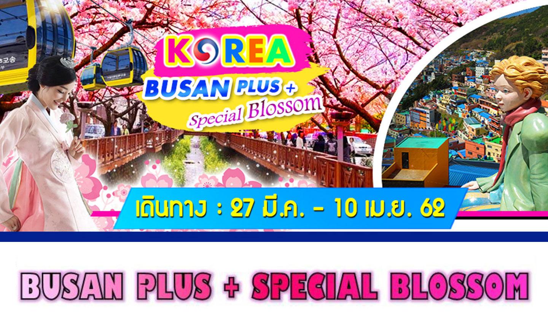 ทัวร์เกาหลี Busan Plus+Special Blossom (มี.ค.-เม.ย.62)