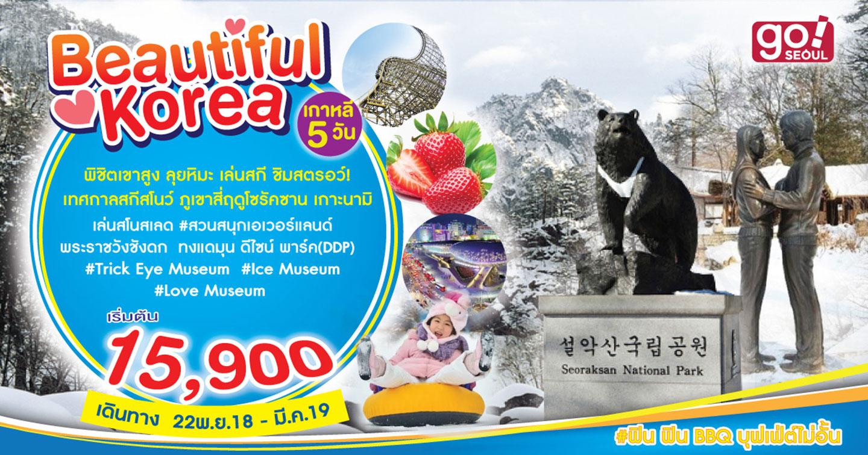 ทัวร์เกาหลี Beautiful Korea Snow (พ.ย.61-มี.ค.62)