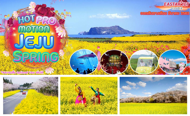ทัวร์เกาหลี Hot Promotion Jeju Spring (มี.ค.19)