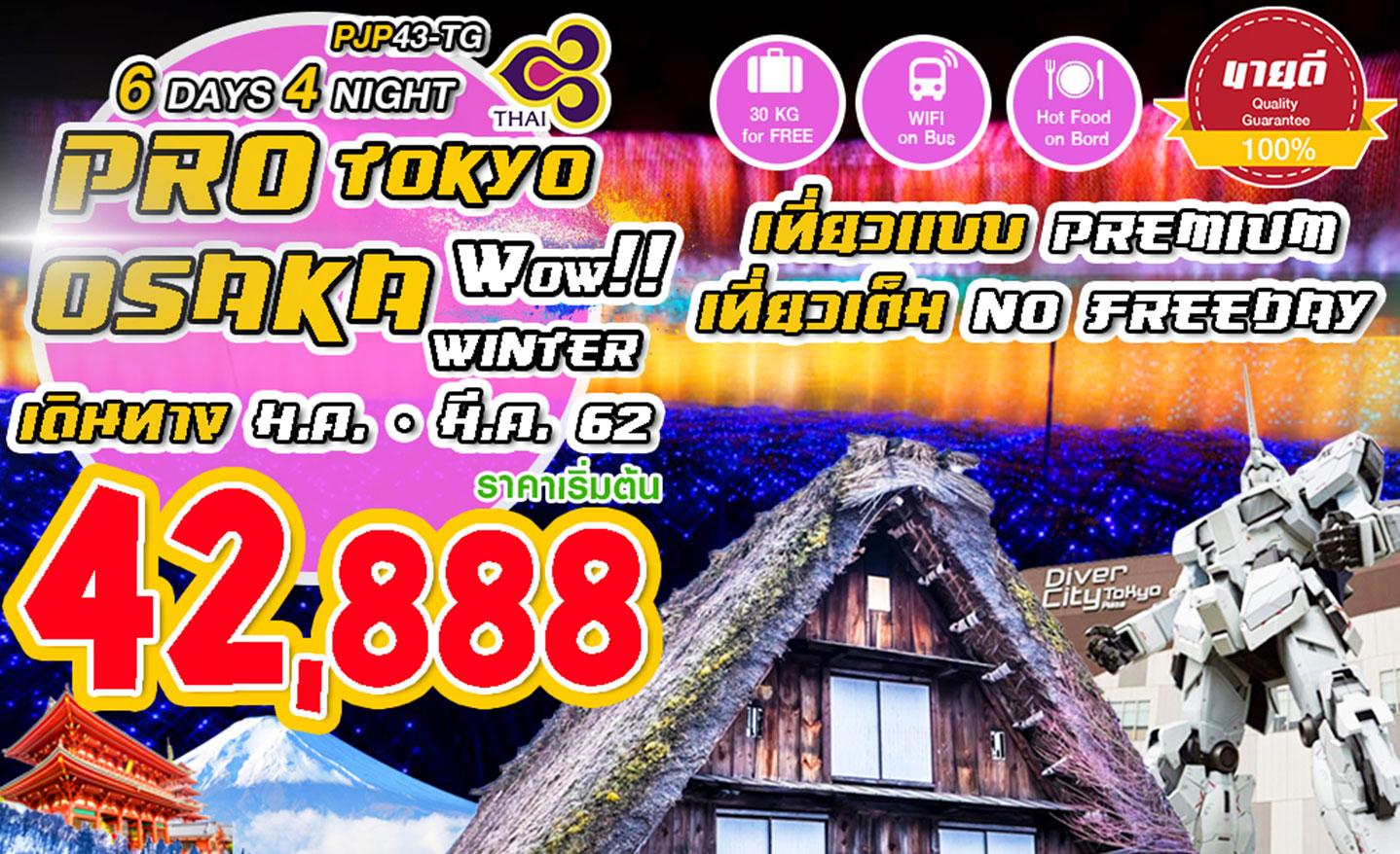 ทัวร์ญี่ปุ่น Tokyo Osaka Wow Winter No Free Day (ม.ค.-มี.ค.62)