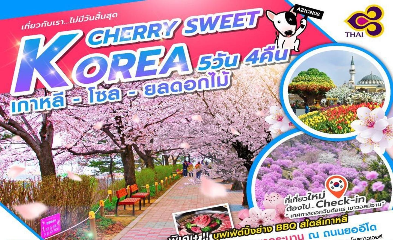 ทัวร์เกาหลี Korea Cherry Sweet (เม.ย.62)