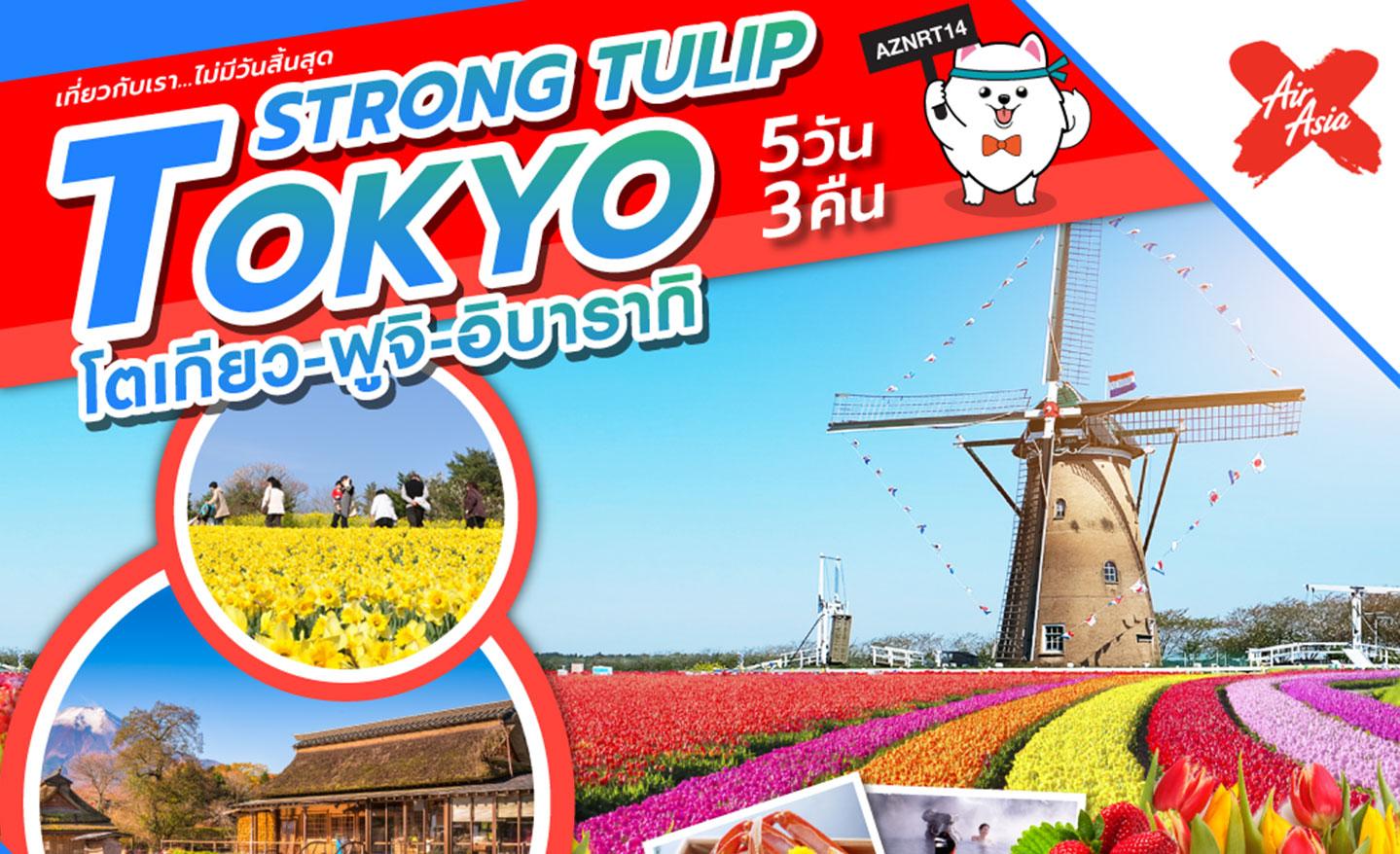 ทัวร์ญี่ปุ่น Strong Tulip Tokyo (พีเรียดสงกรานต์62)