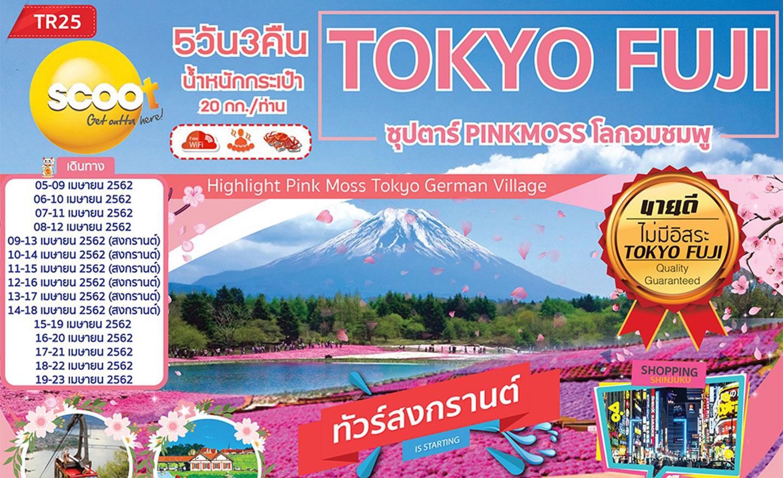 ทัวร์ญี่ปุ่น Tokyo Fuji ซุปตาร์ Pinkmoss โลกอมชมพู (เม.ย.62)