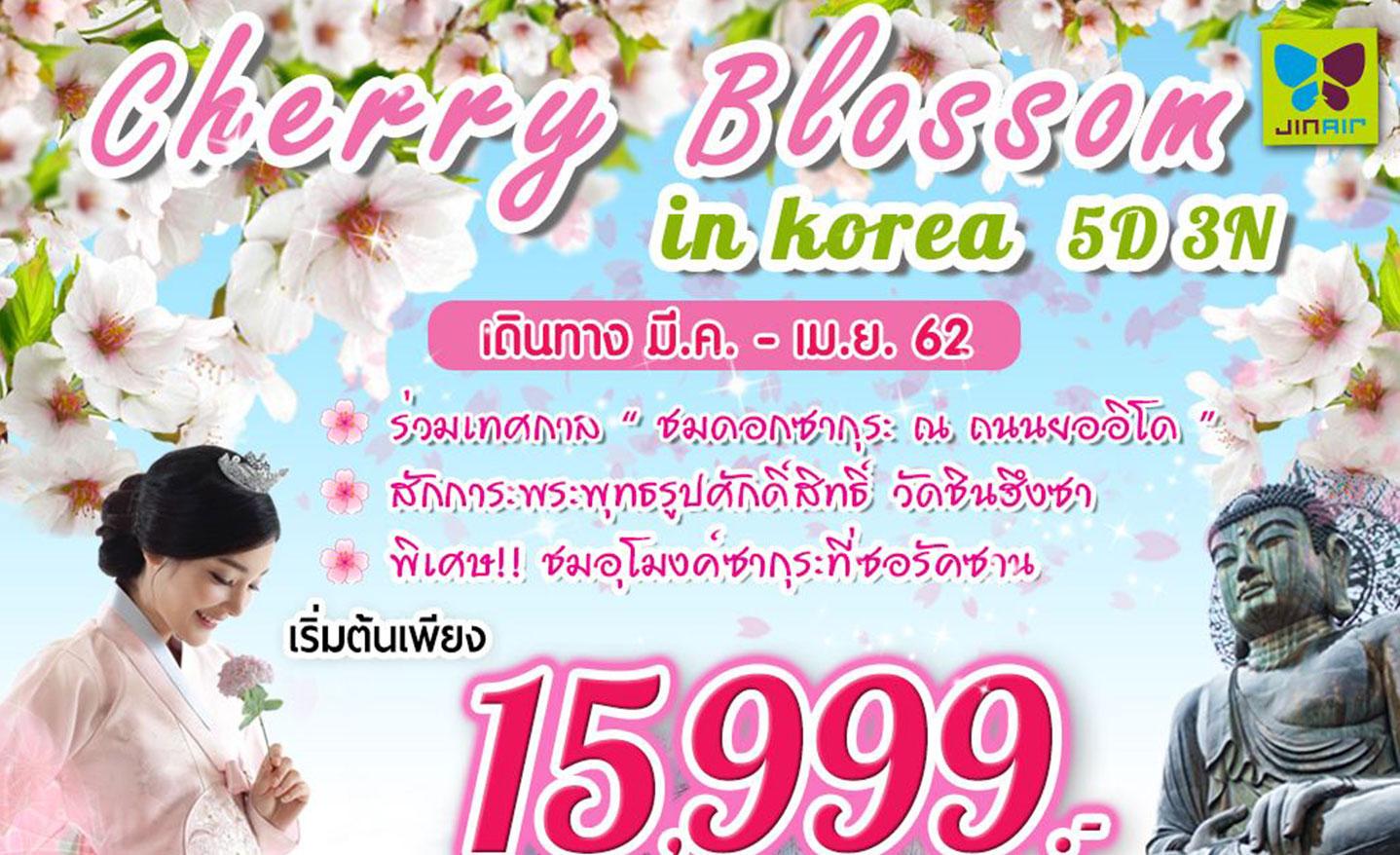 ทัวร์เกาหลี Cherry Blossom In Korea (มี.ค.-เม.ย.62)