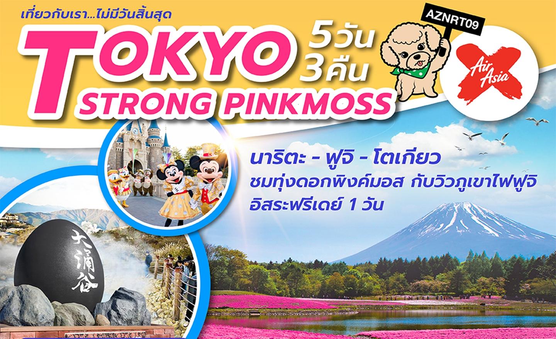 ทัวร์ญี่ปุ่น Tokyo Strong Pinkmoss (เม.ย.-มิ.ย.62)