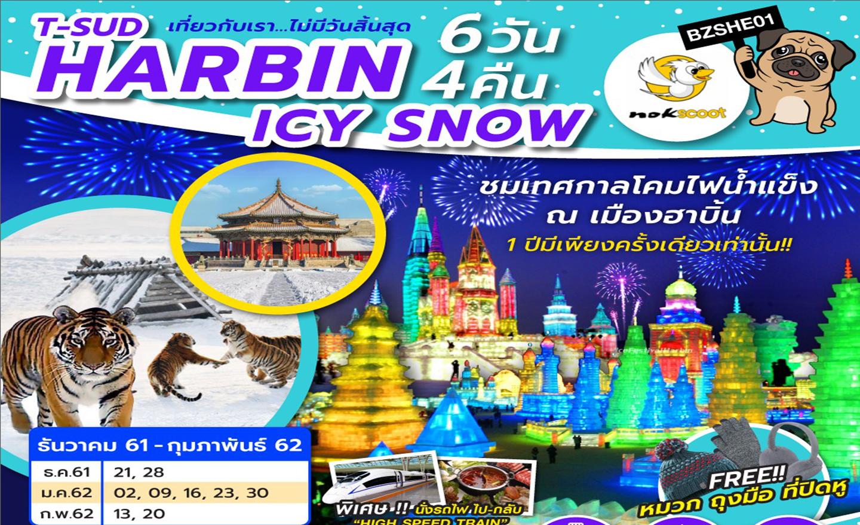 ทัวร์จีน Harbin Icy Snow 6D4N (ม.ค.-ก.พ.62)