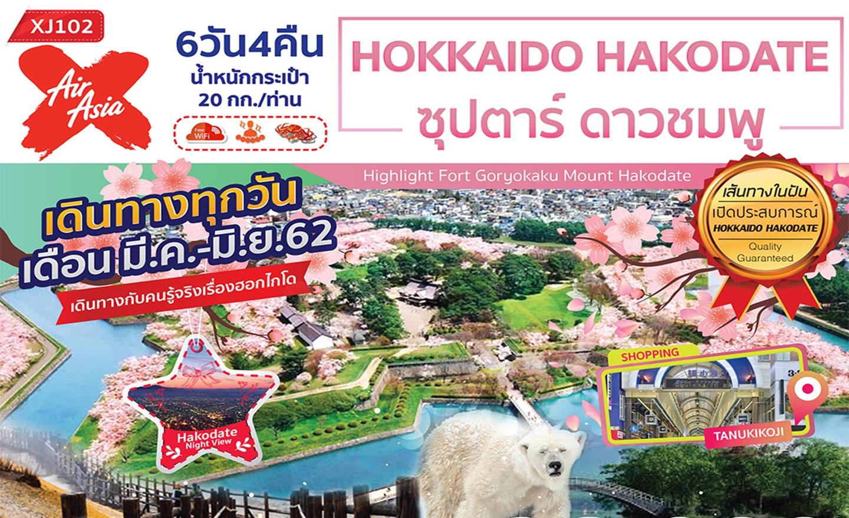 ทัวร์ญี่ปุ่น Hokkaido Hakodate ดาวชมพู 6D4N (มี.ค.-มิ.ย.62)