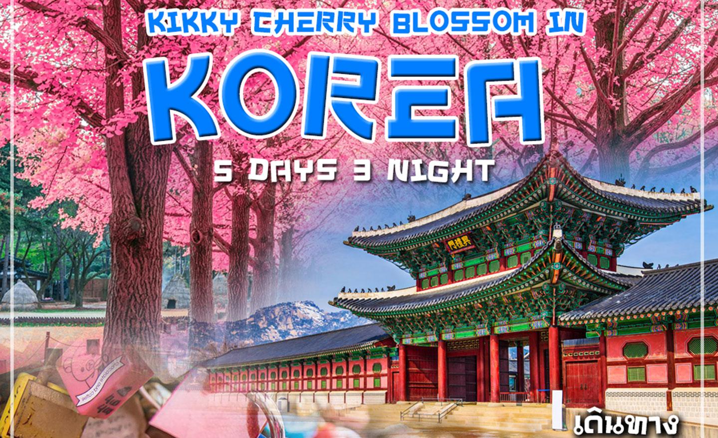 ทัวร์เกาหลี Kikky Cherry Blossom In Korea (มี.ค.-เม.ย.62)