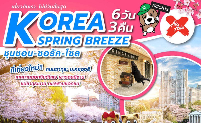 ทัวร์เกาหลี Korea Spring Breeze 6D3N (เม.ย.62)
