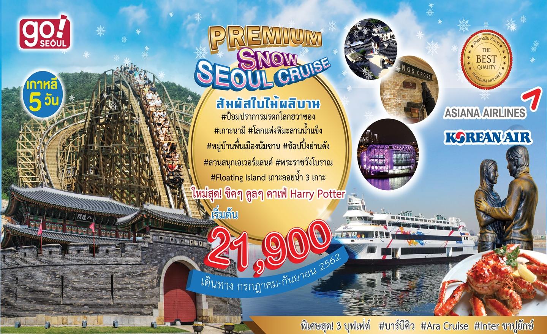 ทัวร์เกาหลี Premium Snow Seoul Cruise (ก.ค.-ก.ย.62)