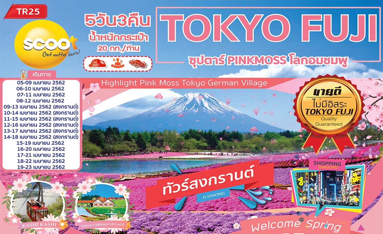 ทัวร์ญี่ปุ่น Tokyo Fuji Pinkmoss โลกอมชมพู (เม.ย.62)