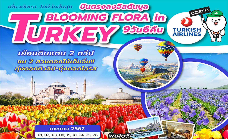 ทัวร์ตุรกี Blooming Flora In Turkey 9D6N (เม.ย.62)