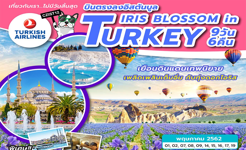 ทัวร์ตุรกี Iris Blossom In Turkey 9D6N (พ.ค.62)