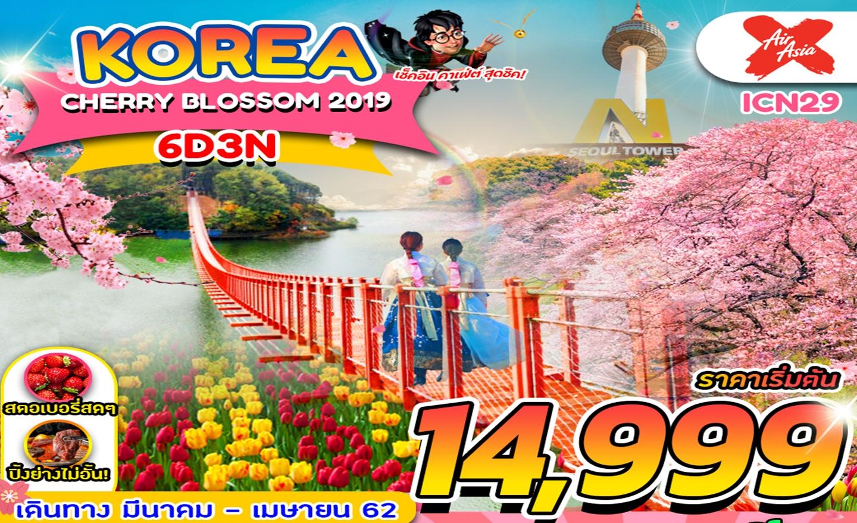 ทัวร์เกาหลี Korea Cherry Blossom 6D3N (มี.ค.-เม.ย.62)