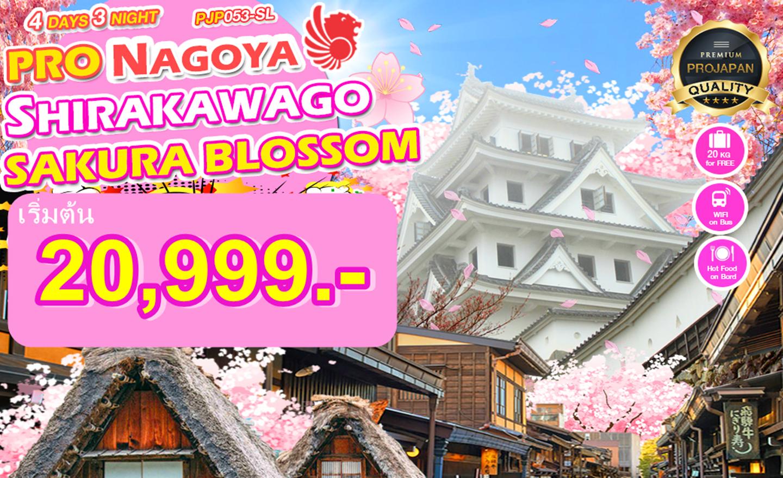 ทัวร์ญี่ปุ่น Pro Nagoya Shirakawago Sakura Blossom 4D3N (มี.ค.-เม.ย.)