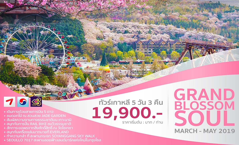 ทัวร์เกาหลี Grand Blossom Soul (มี.ค.-มิ.ย.62)