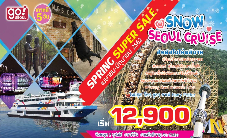 ทัวร์เกาหลี Snow Seoul Cruise Pro!! (เม.ย.-มิ.ย.62)