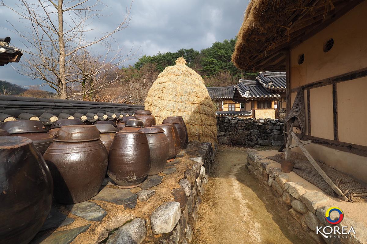 รีวิว ยองจู