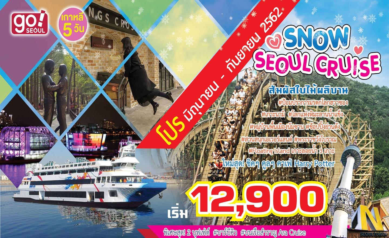ทัวร์เกาหลี Snow Seoul Cruise Pro!! (มิ.ย.-ก.ย.62)