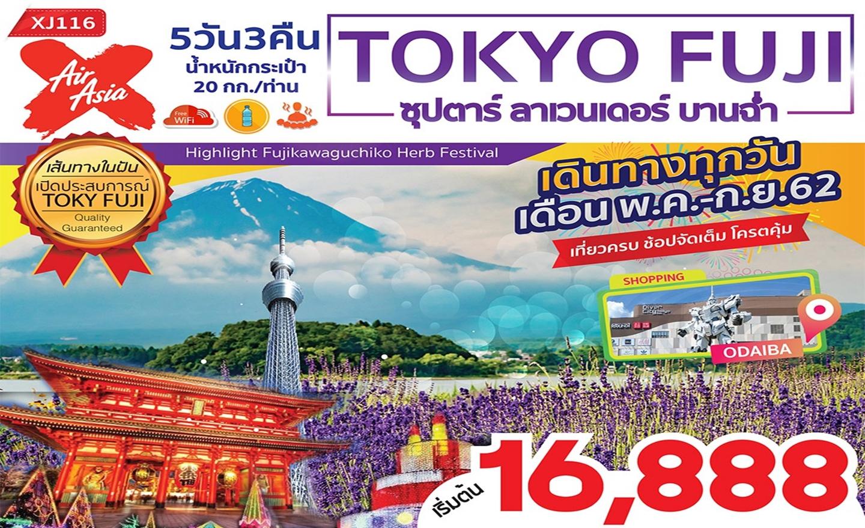 ทัวร์ญี่ปุ่น Tokyo Fuji ซุปตาร์ ลาเวนเดอร์ บานฉ่ำ (พ.ค.-ก.ย.62)