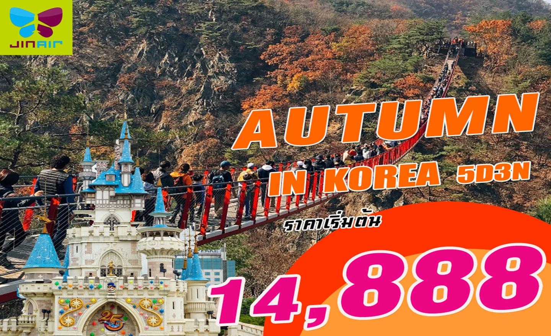 ทัวร์เกาหลี Autumn In Korea (ต.ค.-พ.ย.62)