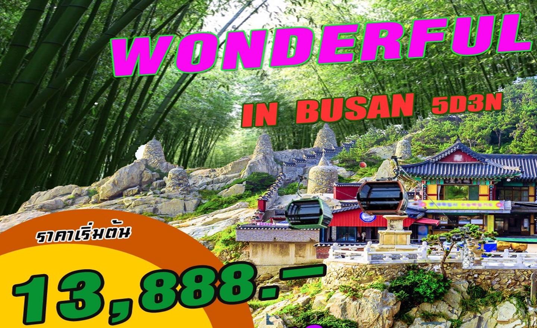 ทัวร์เกาหลี Nologo_Wonderful In Busan (ก.ค.-ก.ย.62)