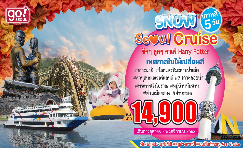 ทัวร์เกาหลี Snow Seoul Cruise (ต.ค.-พ.ย.62)