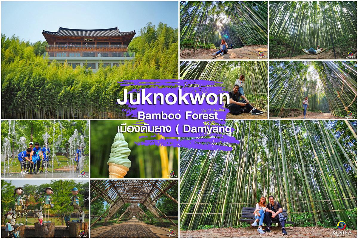 สวนป่าไผ่ จัคนควอน