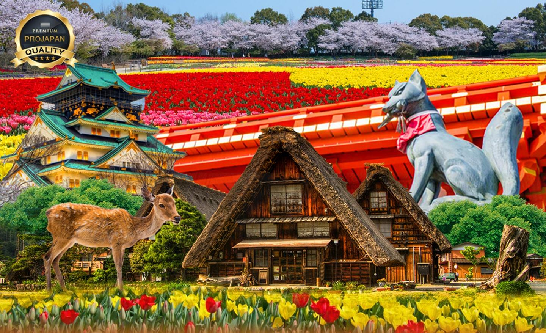 ทัวร์ญี่ปุ่น Pro Osaka Nara Kyoto Shirakawago(ก.ย.-ต.ค.62)