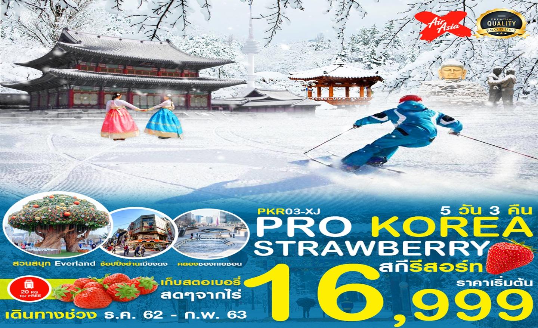 ทัวร์เกาหลี Korea Strawberry สกีรีสอร์ท (ธ.ค.62-ก.พ.63)
