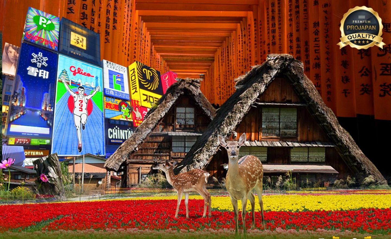 ทัวร์ญี่ปุ่น Pro Osaka Nara Kyoto Shirakawago Holiday ลาน้อย ติดวันหยุด(ต.ค.62)