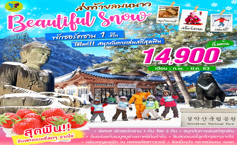 ทัวร์เกาหลี Beautiful Snow In Seorak (ก.พ.-มี.ค.63)