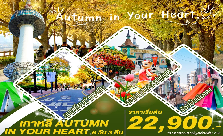 ทัวร์เกาหลี Autumn in Your Heart (ต.ค.-พ.ย.62)
