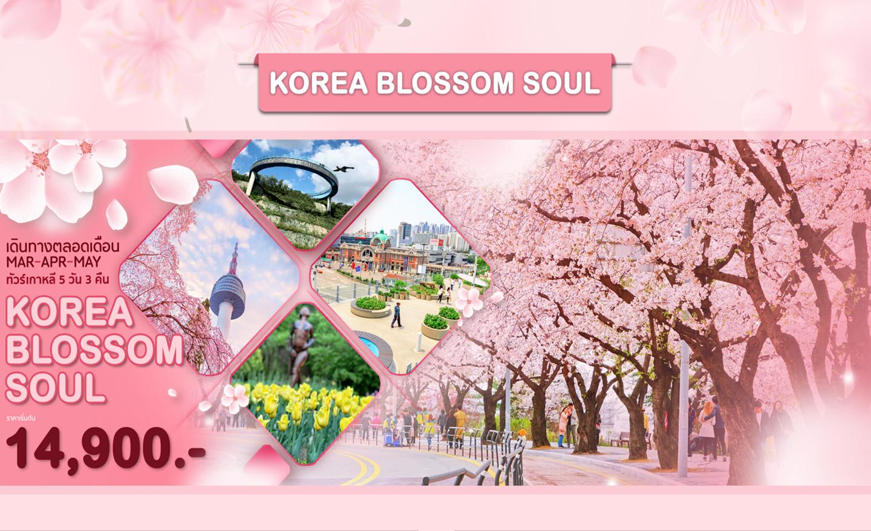 ทัวร์เกาหลี Korea Blossom Soul (มี.ค.-พ.ค. 63)
