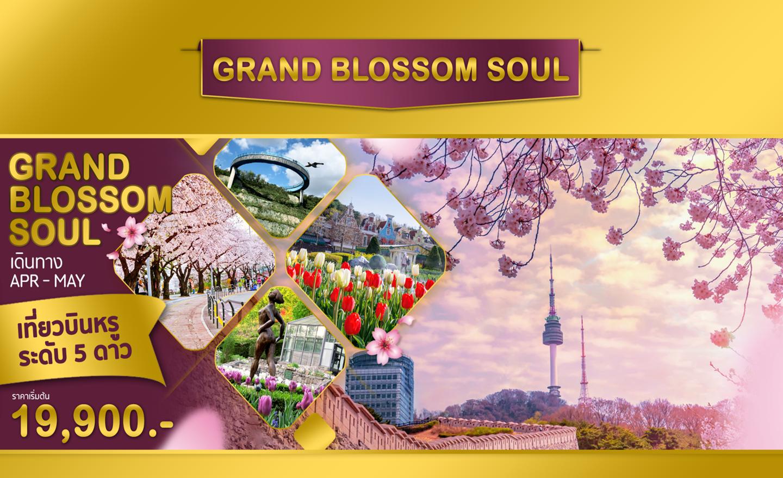 ทัวร์เกาหลี Grand Blossom Soul (เม.ย.-พ.ค.63)