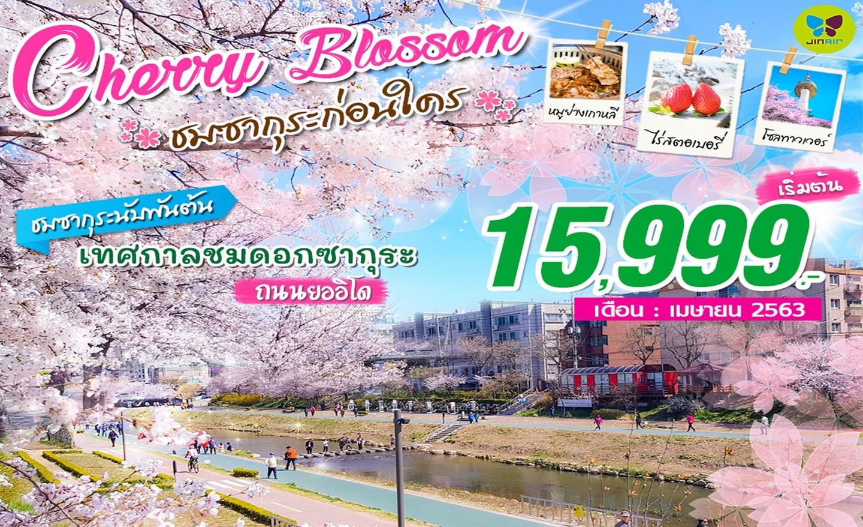 ทัวร์เกาหลี Cherry Blossom ชมซากุระก่อนใคร (เม.ย.63)
