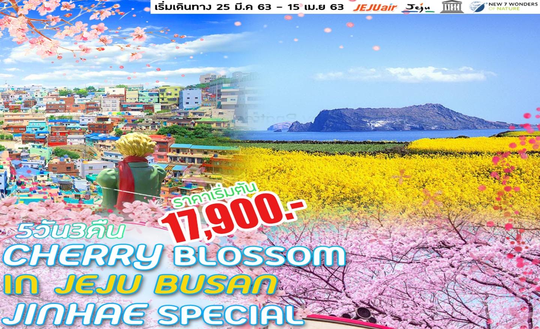 ทัวร์เกาหลี Cherry Blossom In Jeju Busan Jinhae Special (25 มี.ค.- 15 เม.ย.63)