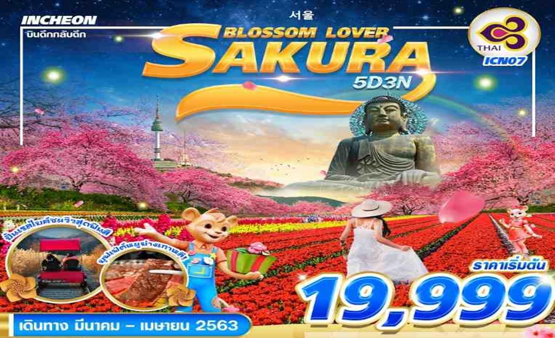 ทัวร์เกาหลี Korea Sakura Blossom Love (มี.ค.-เม.ย.63)