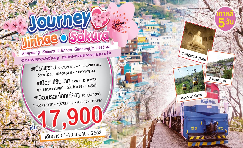 ทัวร์เกาหลี Budget Journey Jinhae Sakura (1-10 เม.ย.63)