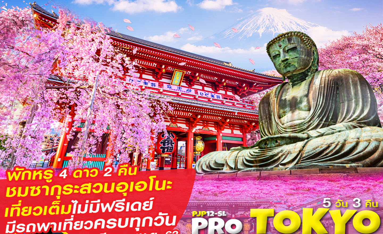 ทัวร์ญี่ปุ่น Pro Tokyo Fuji Sakura 5D3N เที่ยวเต็ม ไม่มีฟรีเดย์ (มี.ค.-เม.ย.63)