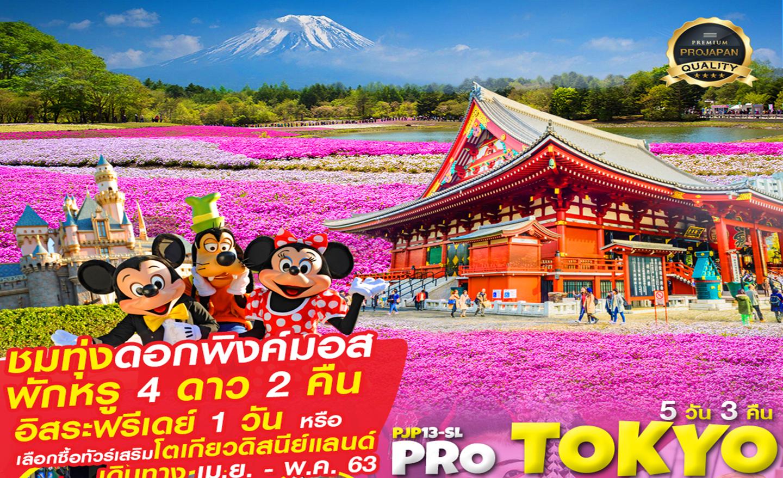ทัวร์ญี่ปุ่น Pro Tokyo ชมพู PINK PINK Free Day 5D3N (เม.ย.-พ.ค.63)