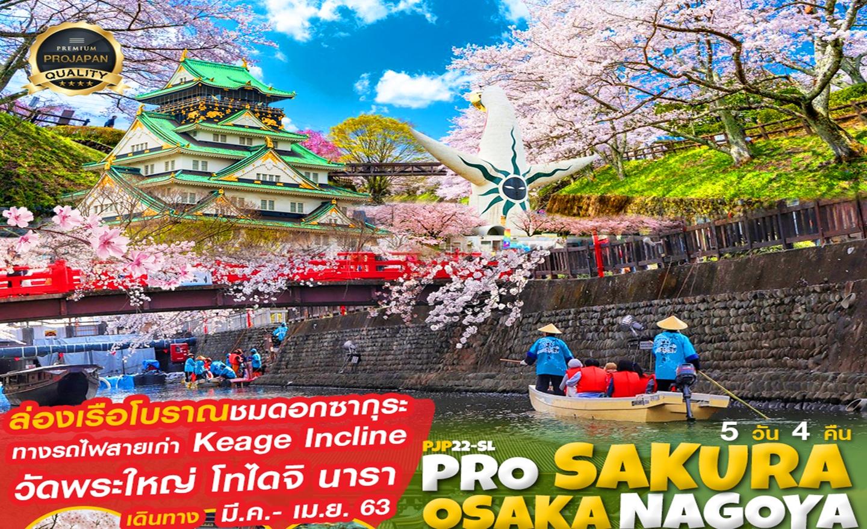 ทัวร์ญี่ปุ่น Pro Sakura Osaka Gifu Kyoto Nara 5D4N (มี.ค.-เม.ย.63)