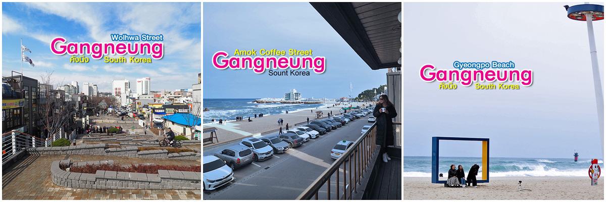 Tourist Taxi Gangneung