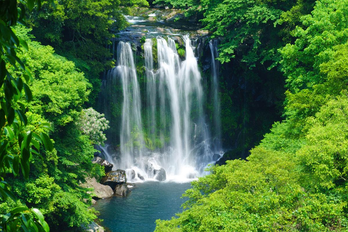 น้ำตกชอนเจยอน : Cheonjeyeon Falls