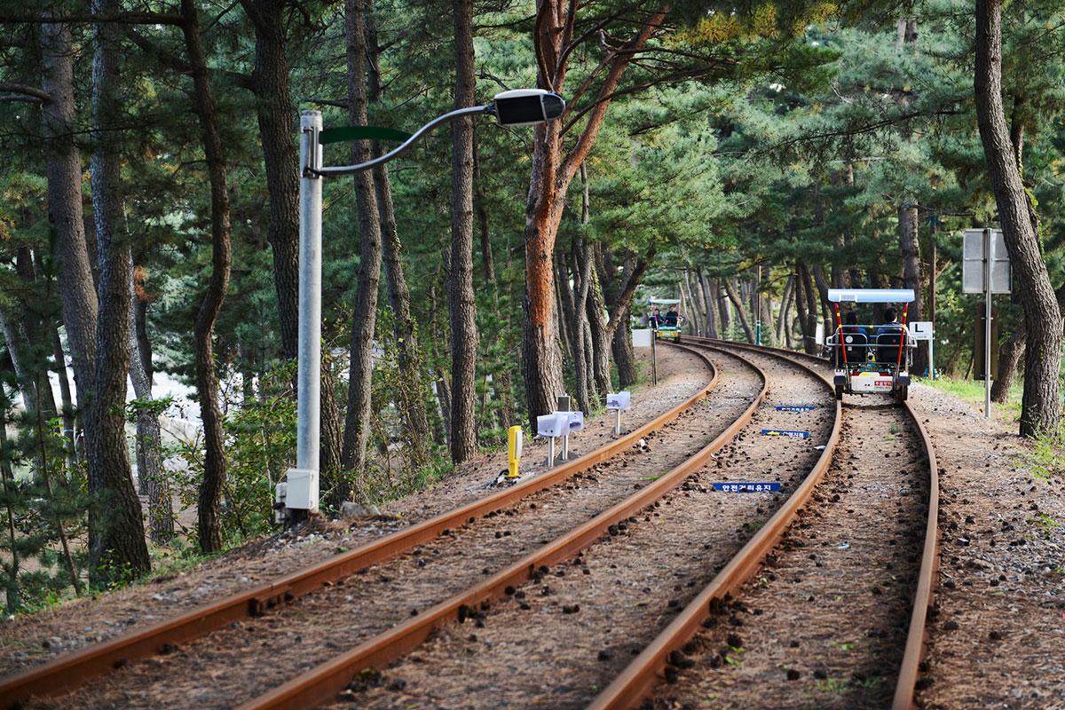 Gangchon Rail Park : อุทยานกังชนเรลปาร์ก